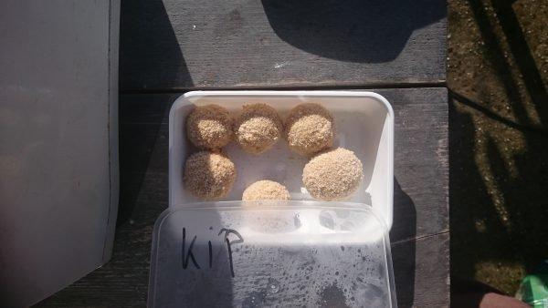 Bitterballen met kip frituren